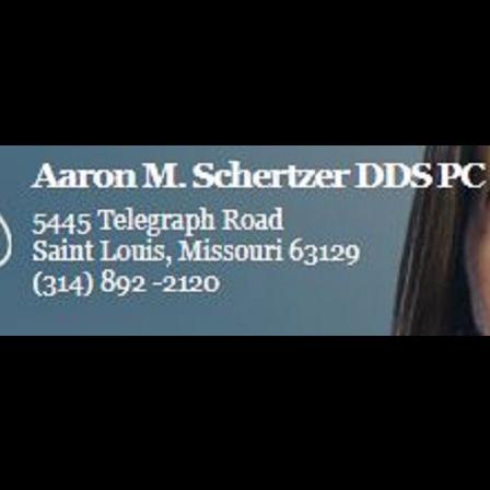 Dr. Aaron M Schertzer
