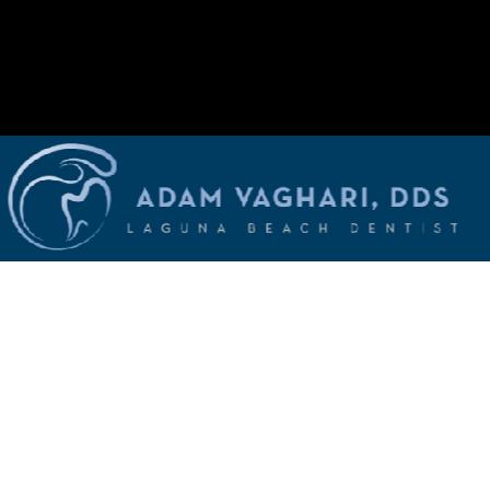 Dr. Adam Vaghari