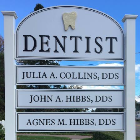 Dr. Agnes M Hibbs