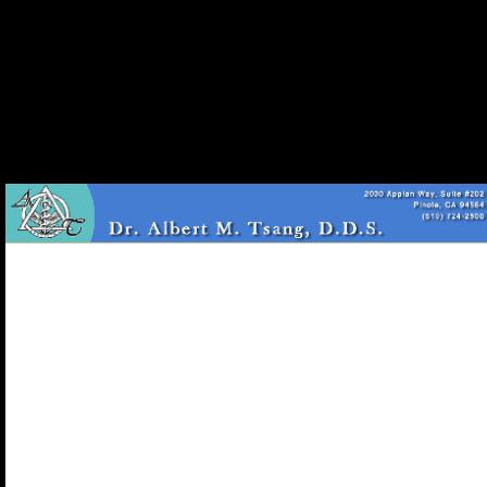 Dr. Albert M Tsang