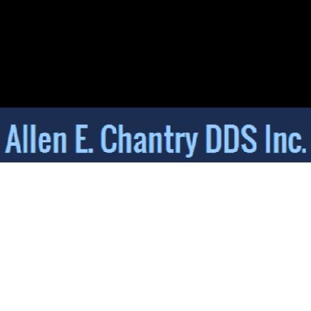 Dr. Allen E Chantry