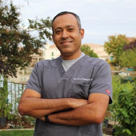 Dr. Aly M Elsayed