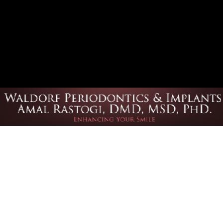 Dr. Amal Rastogi