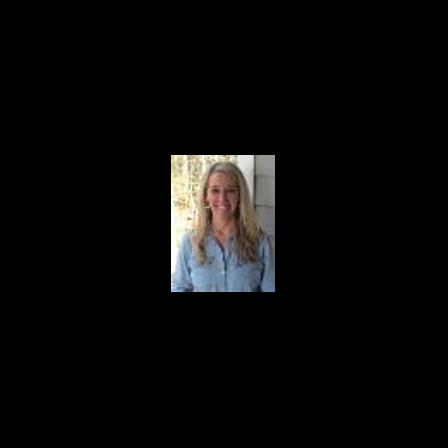 Dr. Amanda M Merritt