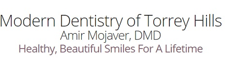 Dr. Amir Mojaver