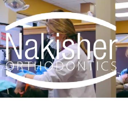Dr. Andrea S. Nakisher