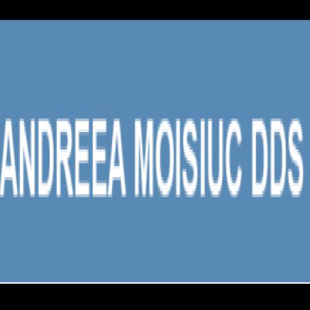 Dr. Andreea Moisiuc