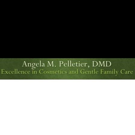 Dr. Angela M Pelletier