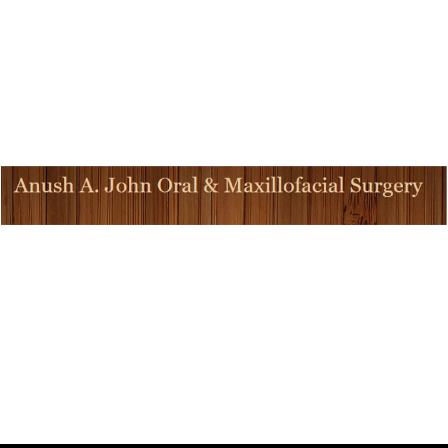 Dr. Anush A John