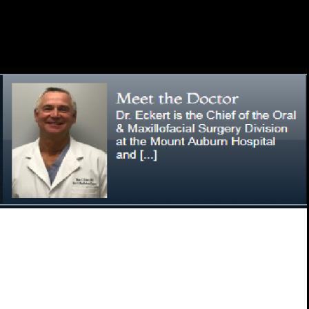 Dr. Blaise C Eckert
