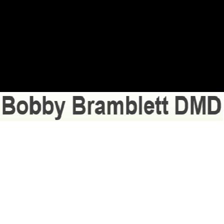 Dr. Bobby J Bramblett