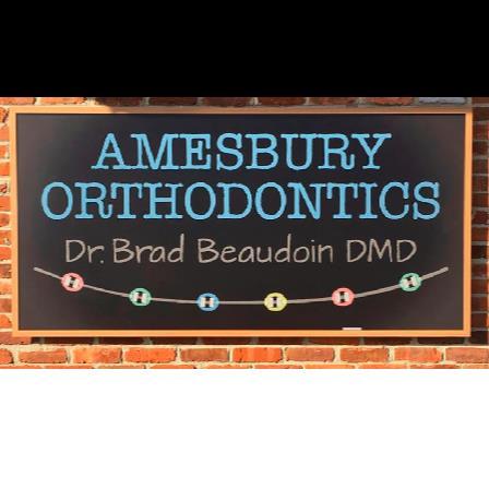 Dr. Brad A Beaudoin