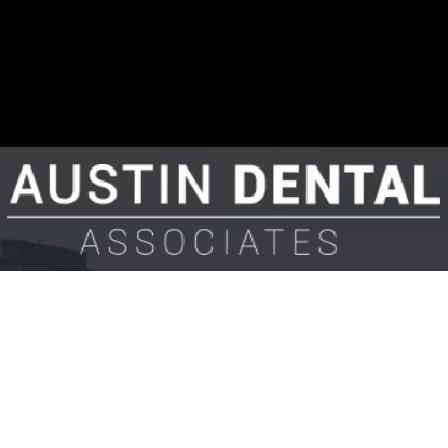 Dr. Bradley E Austin