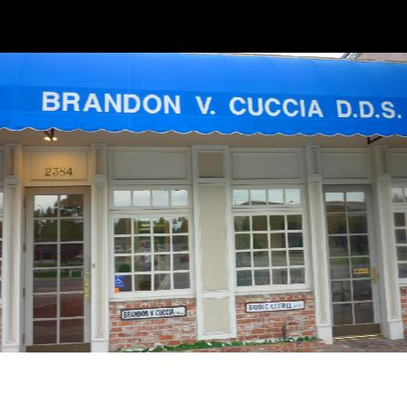 Dr. Brandon Cuccia