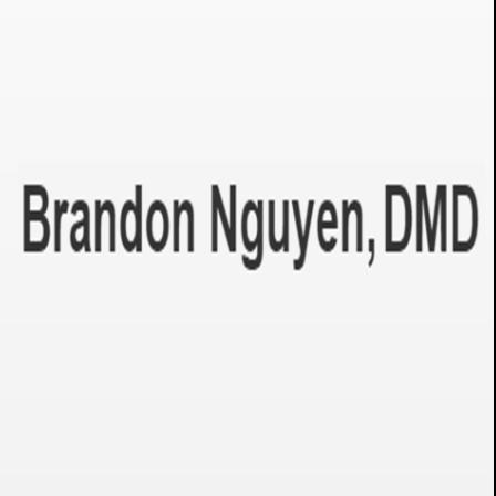 Dr. Brandon Nguyen