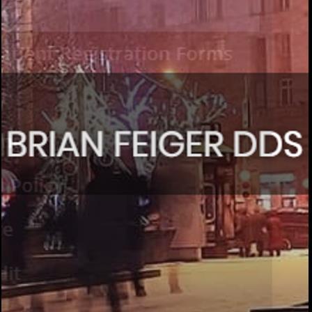 Dr. Brian Feiger