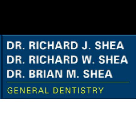 Dr. Brian M Shea
