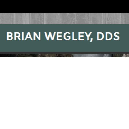 Dr. Brian W Wegley