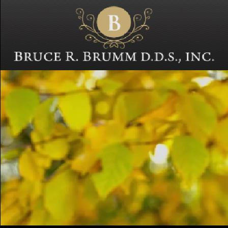 Dr. Bruce R Brumm