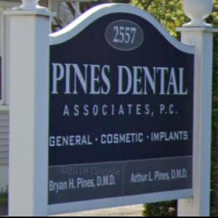 Dr. Bryan Pines