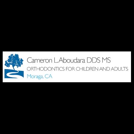 Dr. Cameron L Aboudara