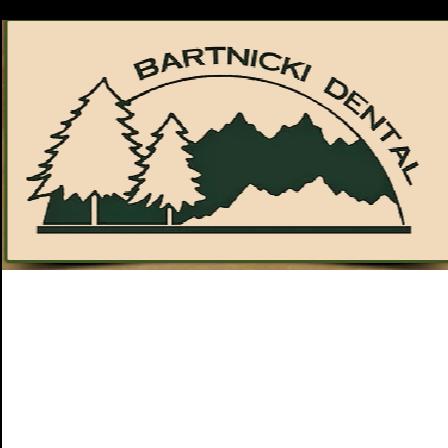 Dr. Christopher S. Bartnicki