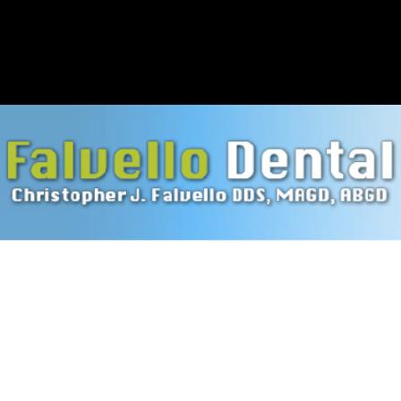 Dr. Christopher J Falvello