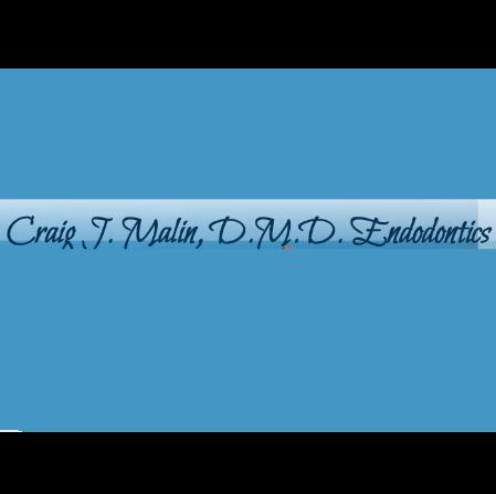 Dr. Craig J Malin