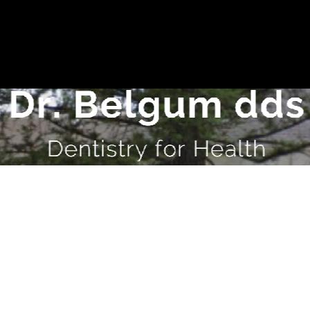 Dr. Cynthia L Belgum