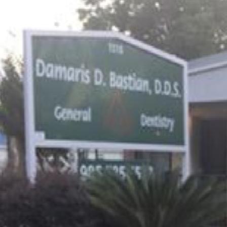 Dr. Damaris D Bastian