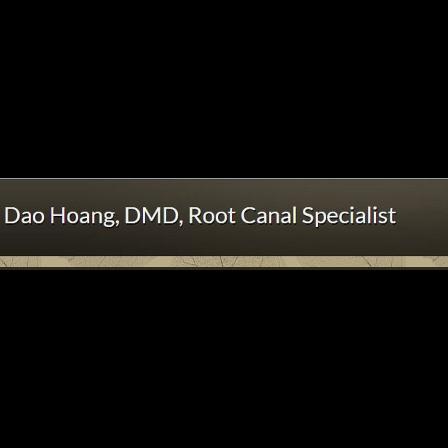 Dr. Dao B Hoang
