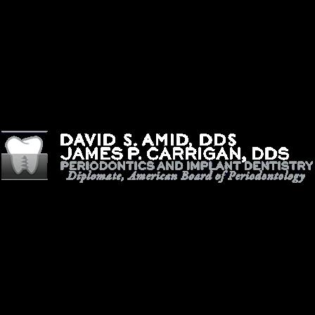 Dr. David S Amid