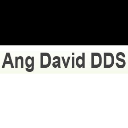 Dr. David Ang