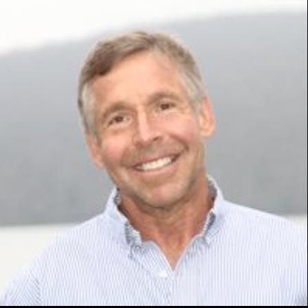 Dr. David M Niesslein
