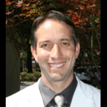 Dr. David A Partrite