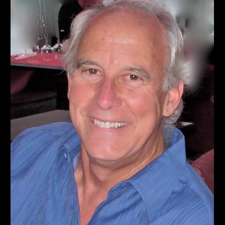 Dr. David E Sbardellati