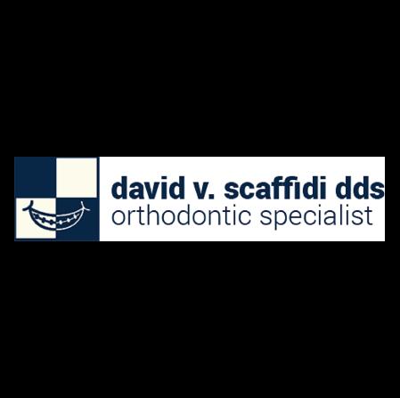 Dr. David V Scaffidi