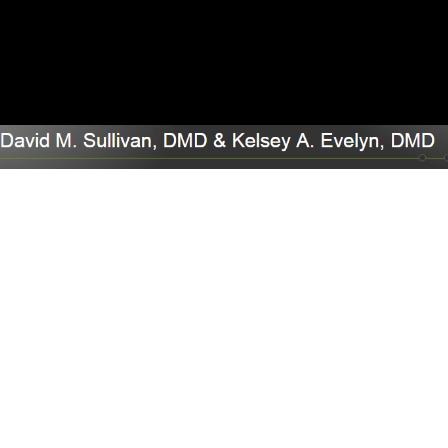 Dr. David M Sullivan