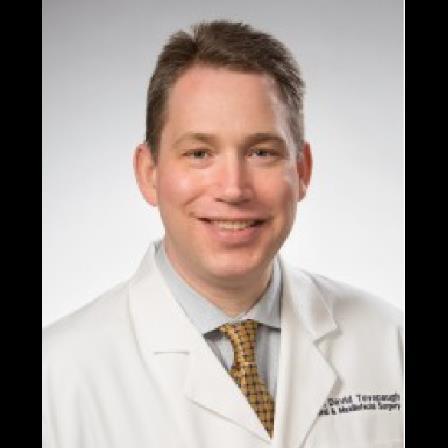 Dr. David B Tevepaugh