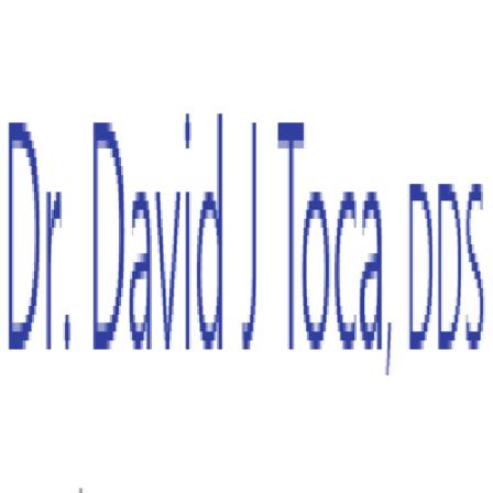 Dr. David J Toca