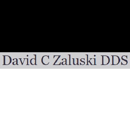 Dr. David C Zaluski