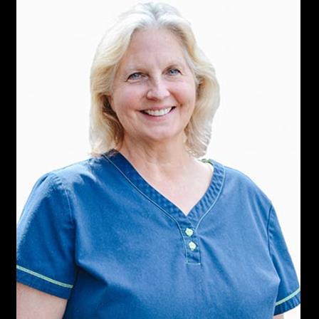 Dr. Debra A Willis