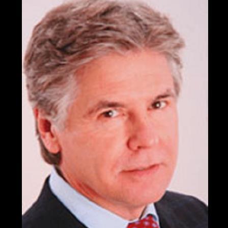 Dr. Dennis P Nutter