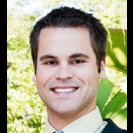 Dr. Derek J Potts