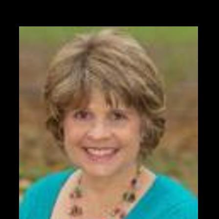 Dr. Dianne J Bridgeman