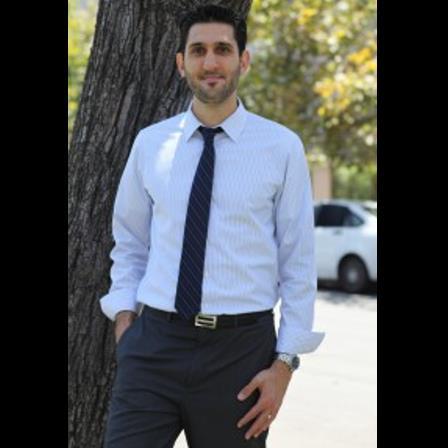 Dr. Dino Gharibian