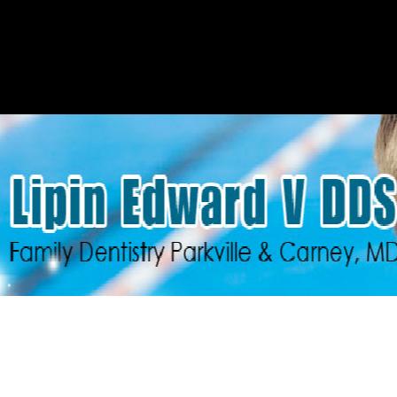 Dr. Edward Lipin