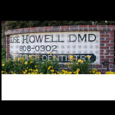 Dr. Elise Howell