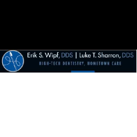 Dr. Erik S Wipf