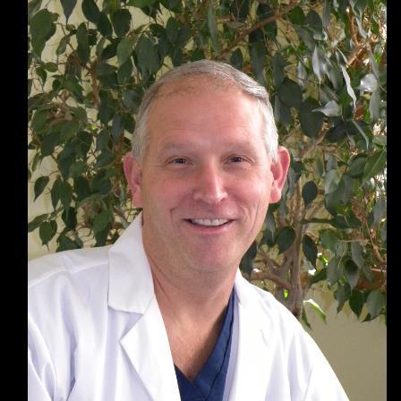 Dr. Eugene S Hulshult, Jr.